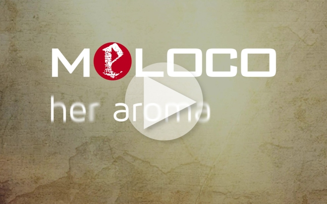"MeLOCO: Lyrics ""Her Aroma"""